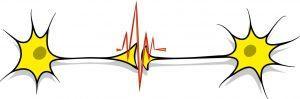 91 bmV1cm9sb2d5IGxvZ28 e1478123731348 300x99 neurology logo