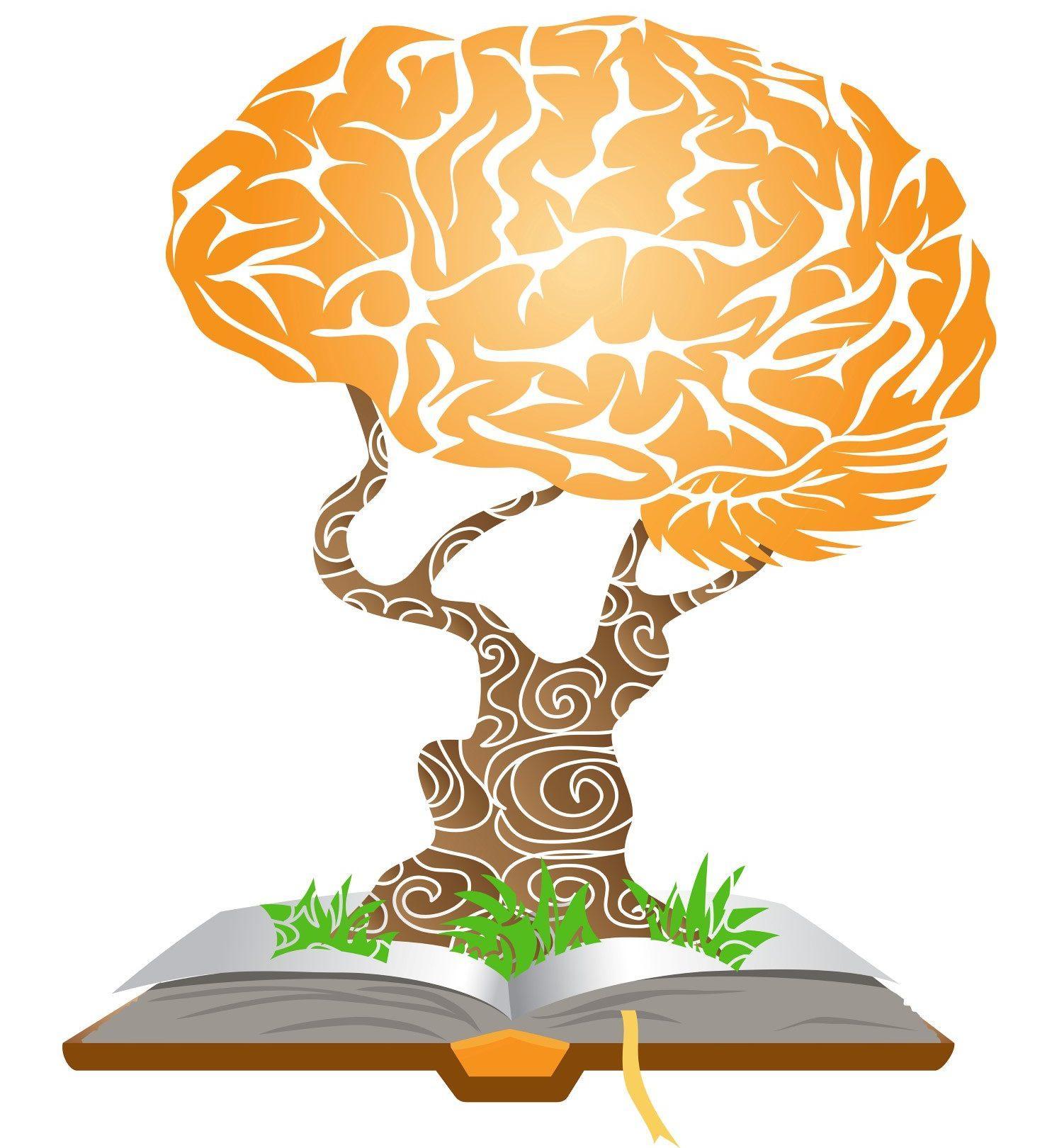 book e1478125038255 Treningi