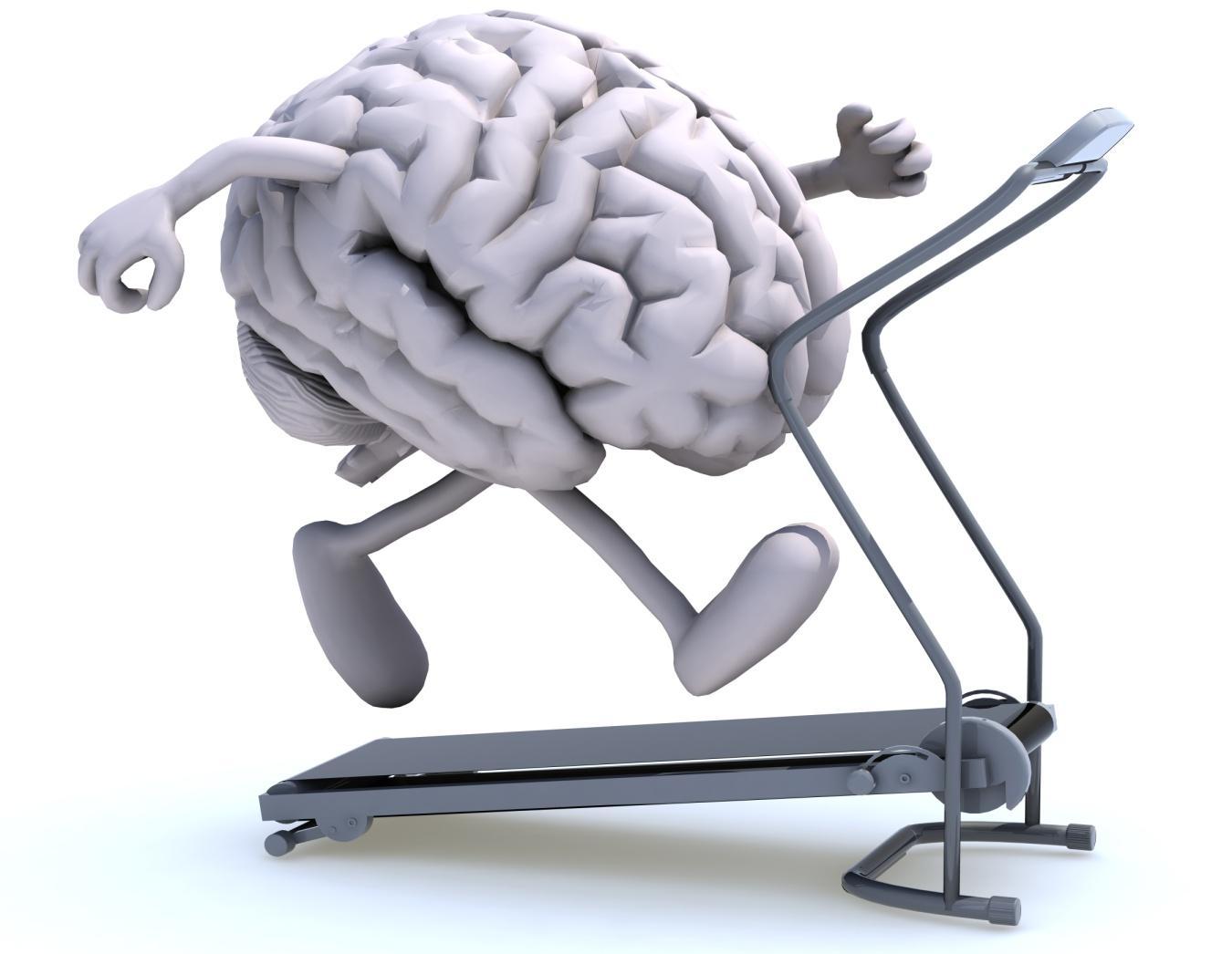 brain O metodzie